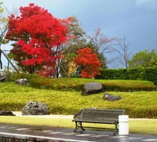 秋のベンチ.JPG