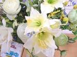 光触媒の花2
