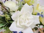 光触媒の花3