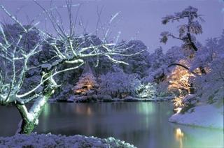 兼六園夜景.jpg