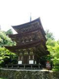 西明寺三重塔.JPG