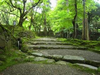 西明寺石段.JPG.JPG