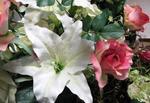 緑栄の花達1